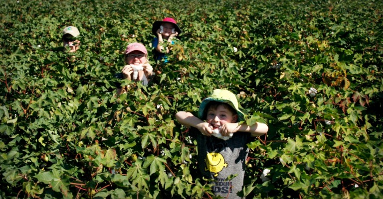 family in the cotton Narrabri