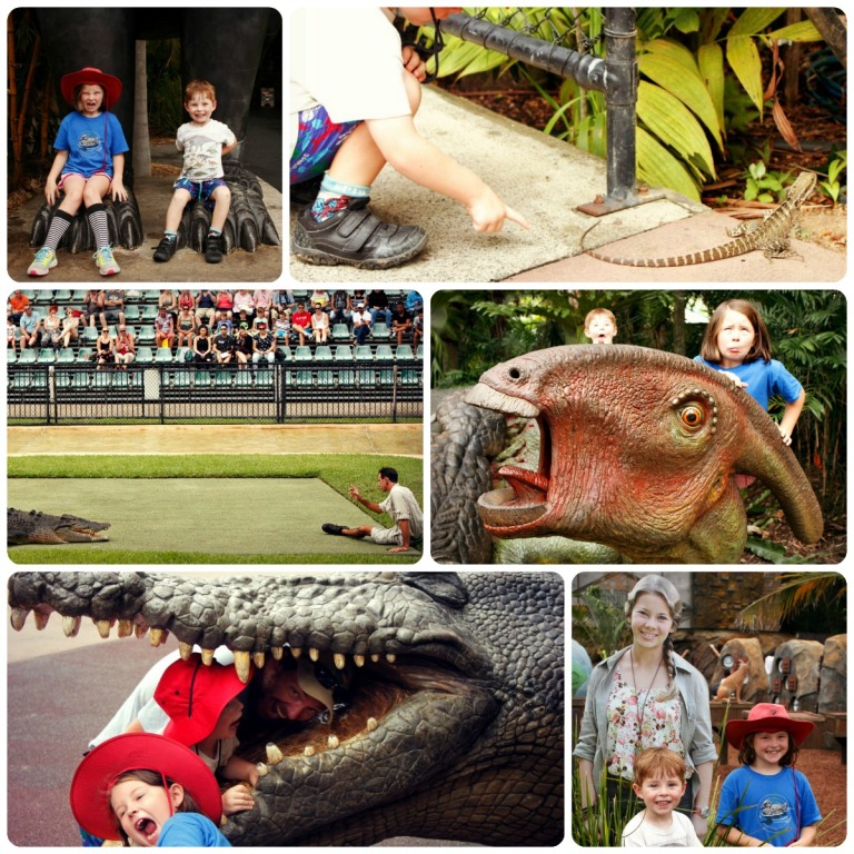 Australia zoo collage